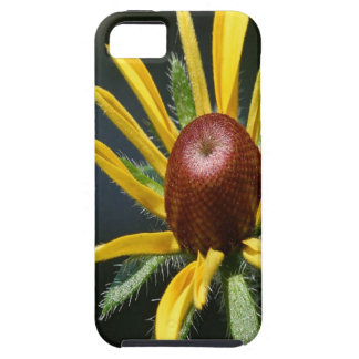 Blackeyed Susan iPhone SE/5/5s Case
