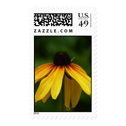 Blackeyed Susan Postage Stamps