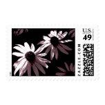 Blackeyed Susans Postage Stamp