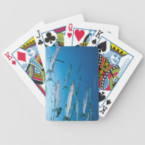 Blackfin Barracuda Bicycle Playing Cards