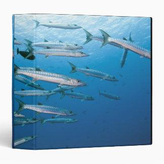 Blackfin Barracuda Binder