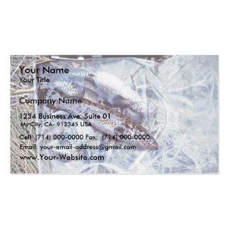 Blackfish Business Card