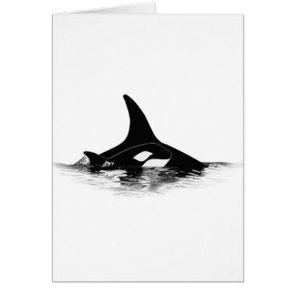 Blackfish Jnr Card