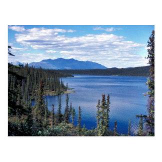 Blackfish Lake Postcard