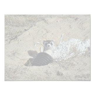 Blackfooted Ferret 4.25x5.5 Paper Invitation Card