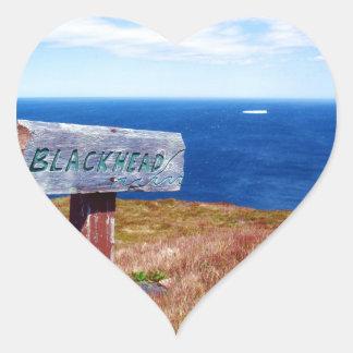Blackhead Heart Sticker