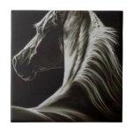 blackhorse-1.jpg azulejos ceramicos