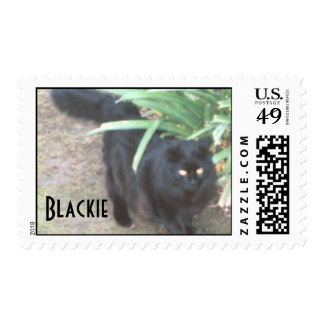 Blackie in the Garden Postage Stamp
