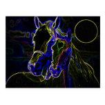 Blacklight Horses Post Card