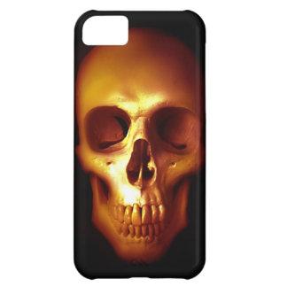 Blackness iPhone 5C Case