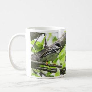 Blackpoll Warbler Classic White Coffee Mug