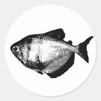 Blackskirt Tetra Classic Round Sticker