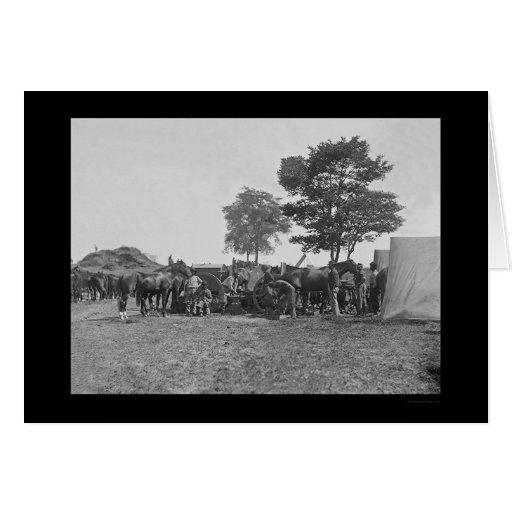 Blacksmith Shoeing Horses at Antietam 1862 Greeting Card
