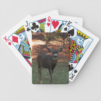 Blacktail Buck Playing Cards