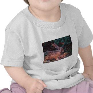 Blacktailed Jackrabbit T Shirt