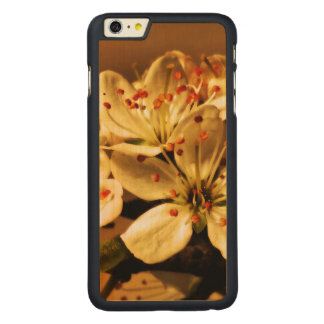 Blackthorn Blossom Carved Maple iPhone 6 Plus Case