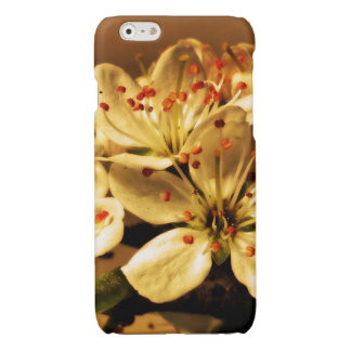Blackthorn Blossom Glossy iPhone 6 Case