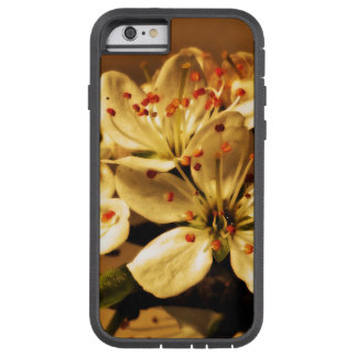 Blackthorn Blossom Tough Xtreme iPhone 6 Case
