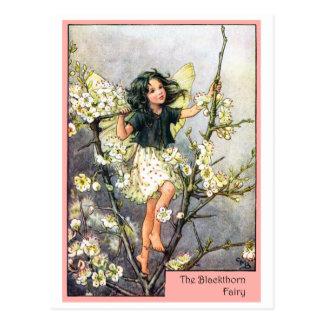 Blackthorn Fairy Postcard