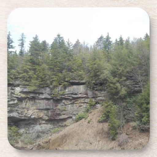 Blackwater Falls Coasters