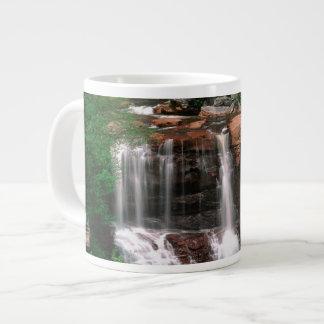 Blackwater Falls, West Virginia, scenic, Giant Coffee Mug