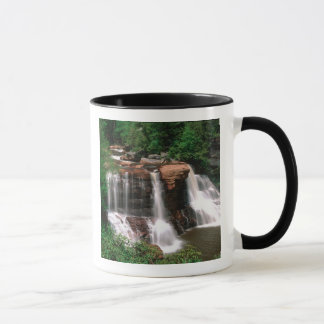 Blackwater Falls, West Virginia, scenic, Mug