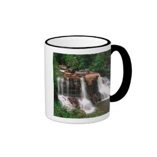 Blackwater Falls, West Virginia, scenic, Mugs