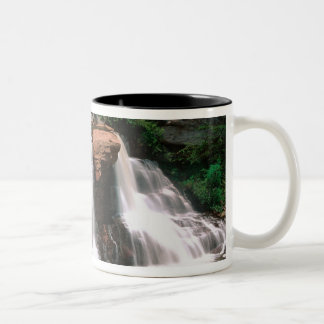 Blackwater Falls, West Virginia, scenic, Two-Tone Coffee Mug