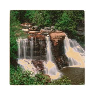 Blackwater Falls, West Virginia, scenic, Wood Coaster