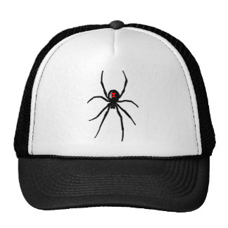 blackwidow spider hat