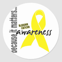 Bladder Cancer Awareness Classic Round Sticker