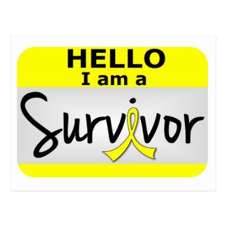 Bladder Cancer Survivor 24.png Postcard