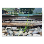 Blade of Grass on Railroad Tracks Greeting Cards