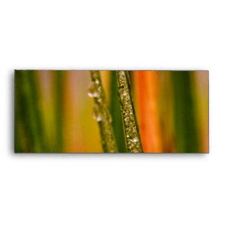 Blades of grass envelope