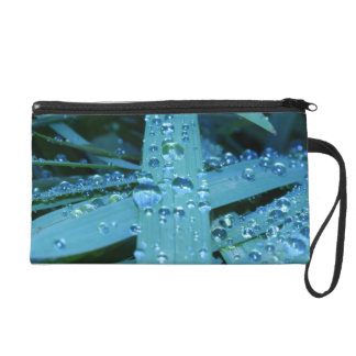 Blades of Grass in Morning Wristlet