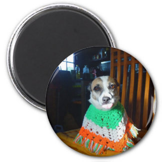 Blaheen of the roads dog Nuala in her new  poncho Magnet