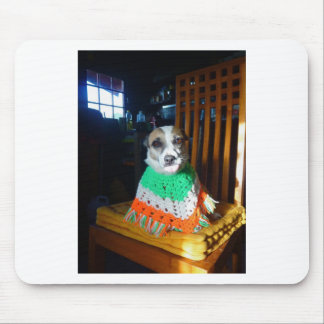 Blaheen of the roads dog Nuala in her new  poncho Mouse Pad