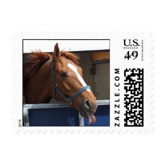 Blahhhh Horse Postage