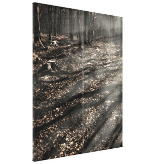 Blair Witch....over there! Canvas Print