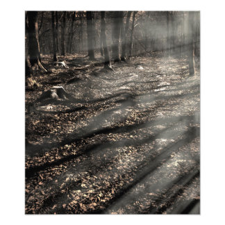 Blair Witch....over there! Photo Print