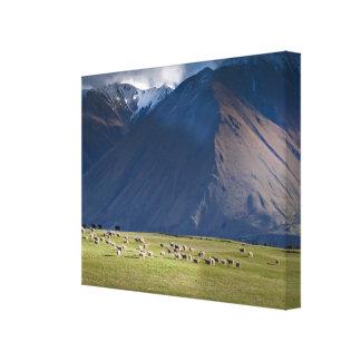 Blak Mountain Stretched Canvas Prints