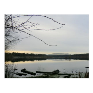 Blakemere Moss in Cheshire Postcard