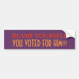 Blame Yourself, you voted for him Car Bumper Sticker