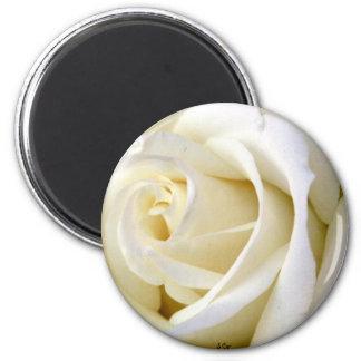 Blanco color de rosa imán para frigorifico