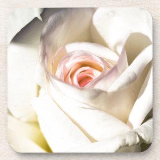 Blanco color de rosa posavasos de bebidas