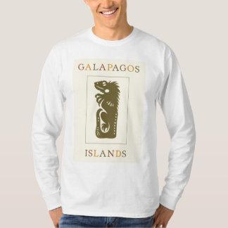 Blanco de la iguana de las islas de las Islas Playera