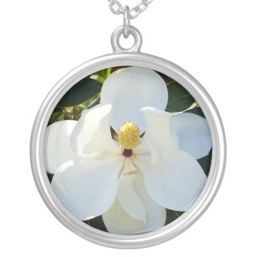 Blanco de la magnolia colgante