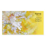 Blanco del eucalipto en tarjetas de visita amarill