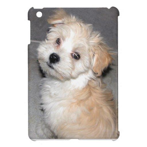 Blanco del moreno del perrito del rescate de Havan iPad Mini Carcasa