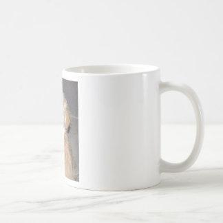 Blanco del moreno del perrito del rescate de taza clásica